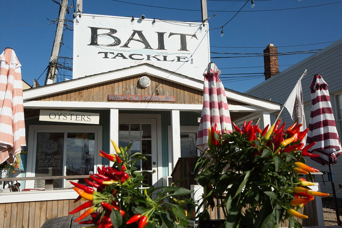 Bait-tackle-shop