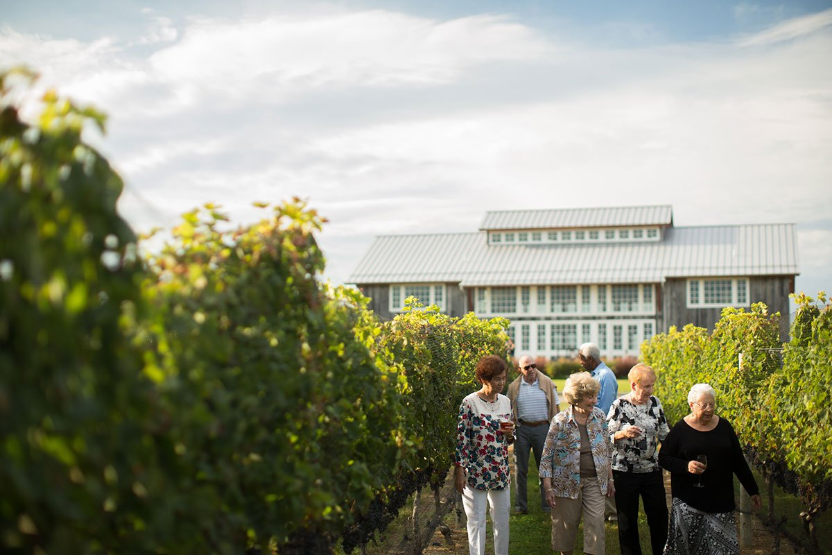 Group-walking-through-vineyard