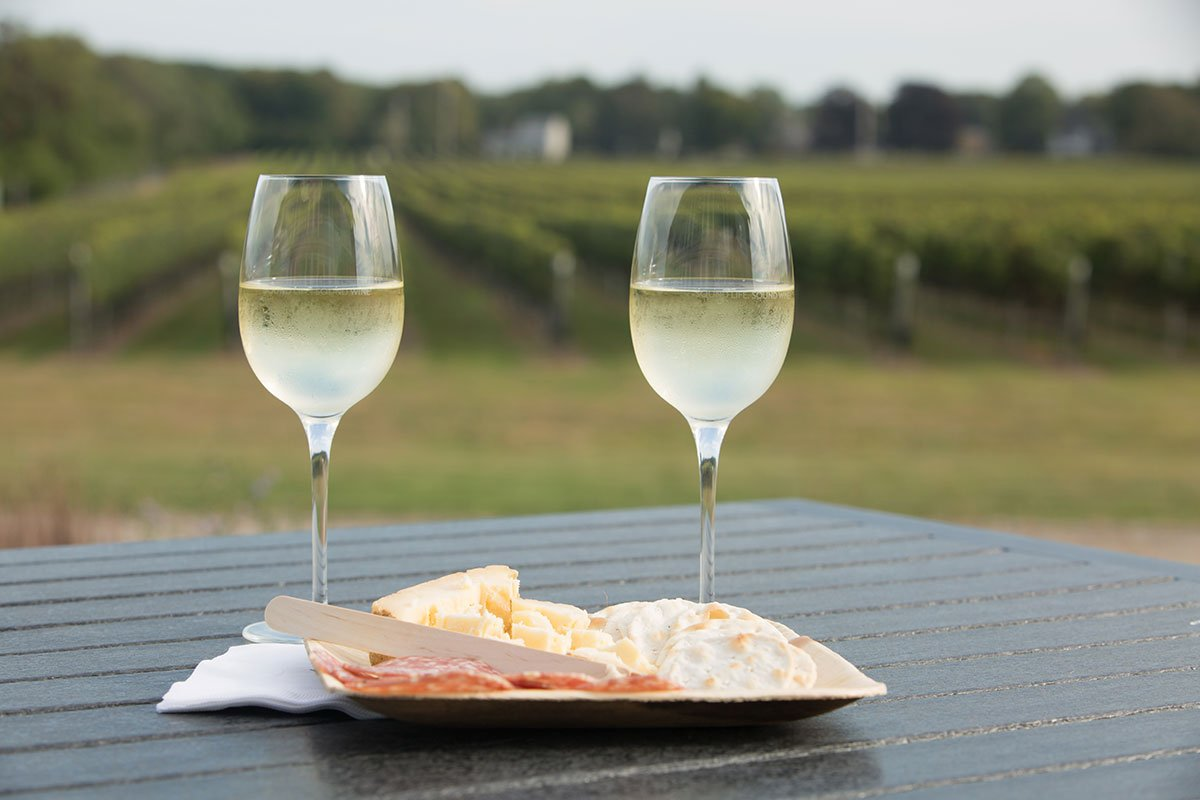 Wine-and-cheese-at-vineyard